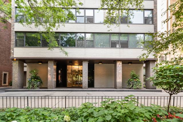 1540 N State Parkway 2B, Chicago, IL 60610 (MLS #11170612) :: Lux Home Chicago