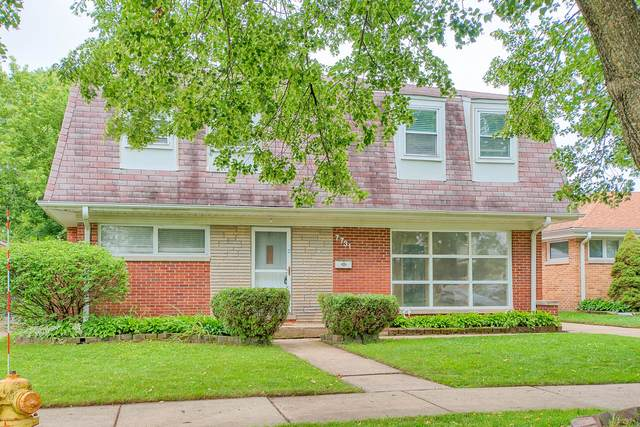7731 N Oconto Avenue, Niles, IL 60714 (MLS #11170668) :: Lewke Partners - Keller Williams Success Realty