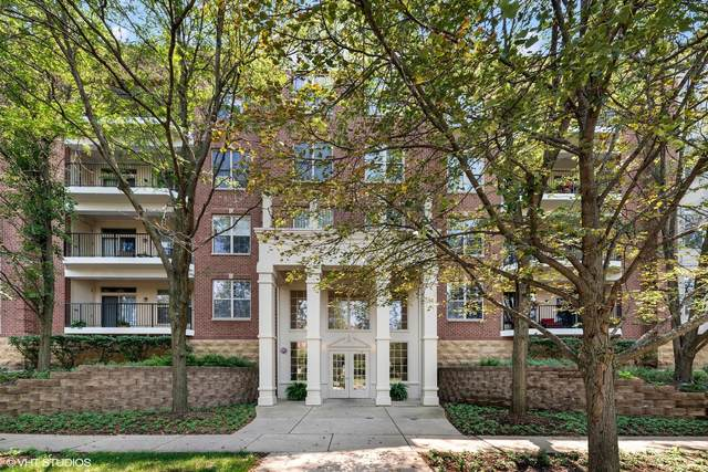 3125 Town Square Drive #408, Rolling Meadows, IL 60008 (MLS #11170737) :: O'Neil Property Group