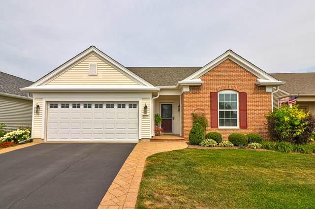 11510 Windsor Drive, Huntley, IL 60142 (MLS #11170753) :: O'Neil Property Group
