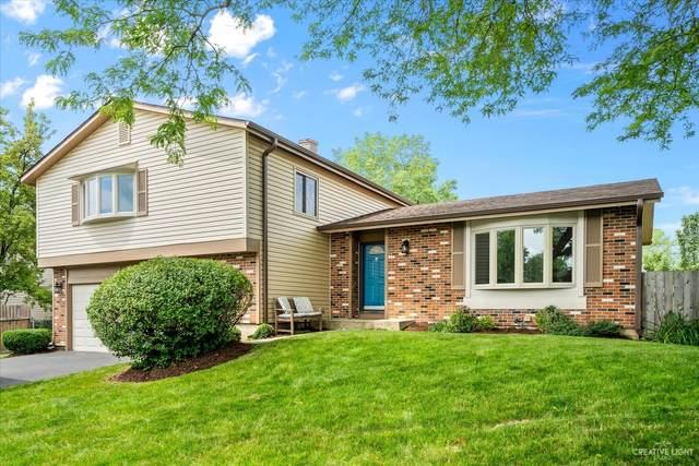 856 S Prospect Avenue, Bartlett, IL 60103 (MLS #11171016) :: Suburban Life Realty