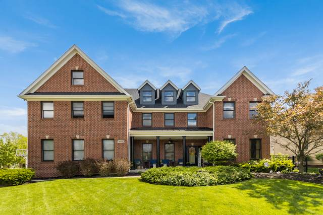 4012 Juneberry Road, Naperville, IL 60564 (MLS #11171048) :: O'Neil Property Group