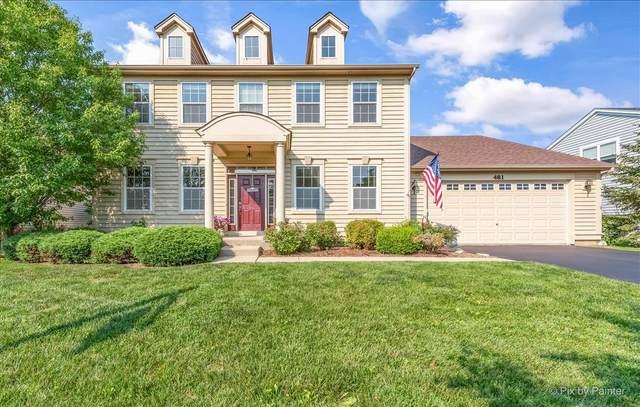 481 Mooresfield Street, Elgin, IL 60124 (MLS #11171066) :: Jacqui Miller Homes