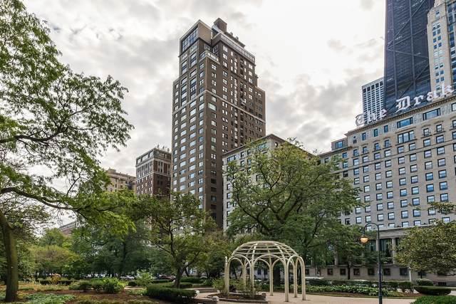 179 E Lake Shore Drive #501, Chicago, IL 60611 (MLS #11171078) :: Lux Home Chicago