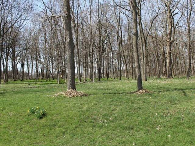 TBD Lyndon Road, Prophetstown, IL 61277 (MLS #11171279) :: Lux Home Chicago