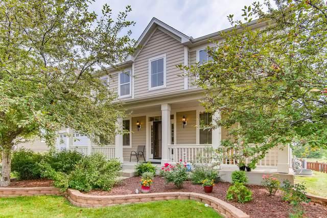 393 Fountain Avenue, Elgin, IL 60124 (MLS #11171296) :: Jacqui Miller Homes