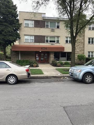 426 S Lombard Avenue #201, Oak Park, IL 60302 (MLS #11171364) :: O'Neil Property Group