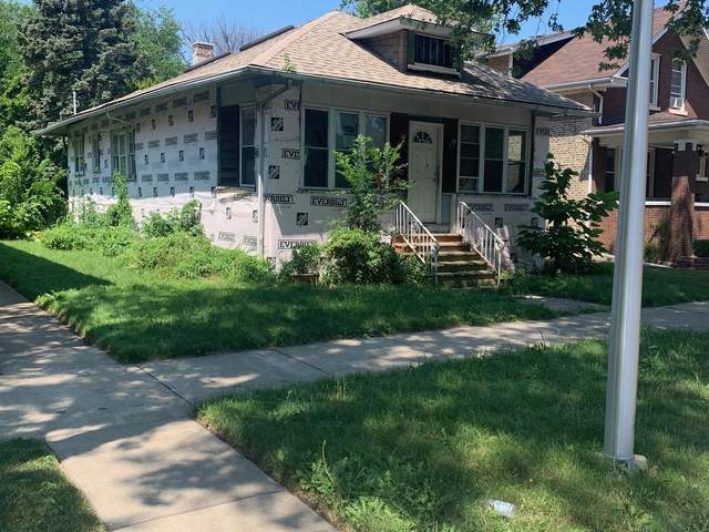 8024 S Constance Avenue, Chicago, IL 60617 (MLS #11171595) :: The Wexler Group at Keller Williams Preferred Realty