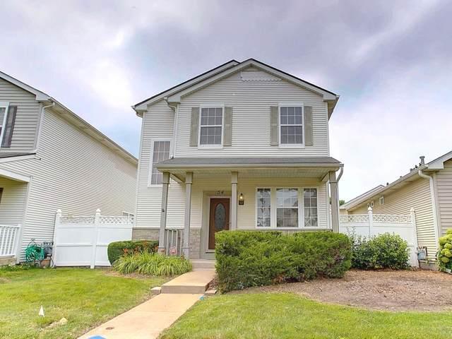 54 Freesia Drive, Romeoville, IL 60446 (MLS #11171760) :: Angela Walker Homes Real Estate Group