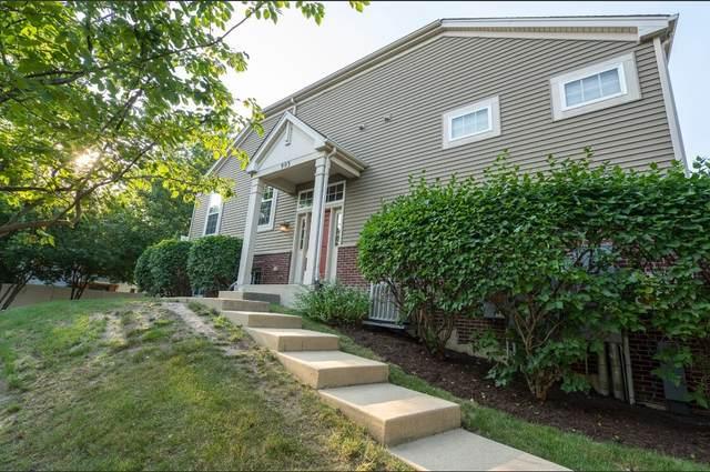 903 Neudearborn Lane, Naperville, IL 60563 (MLS #11171841) :: Littlefield Group
