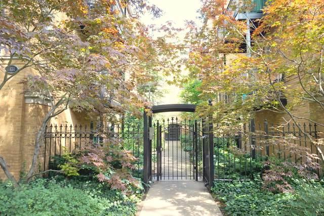 7631 N Greenview Avenue 1F, Chicago, IL 60626 (MLS #11171876) :: Lewke Partners - Keller Williams Success Realty