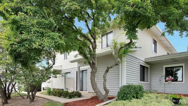 743 Edgelake, Schaumburg, IL 60194 (MLS #11171907) :: O'Neil Property Group