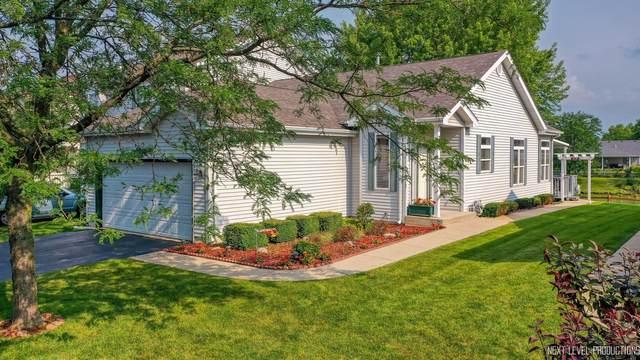 606 Chestnut Drive, Oswego, IL 60543 (MLS #11172028) :: O'Neil Property Group