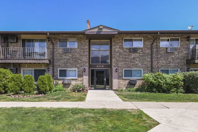 808 E Old Willow Road #206, Prospect Heights, IL 60070 (MLS #11172127) :: The Wexler Group at Keller Williams Preferred Realty