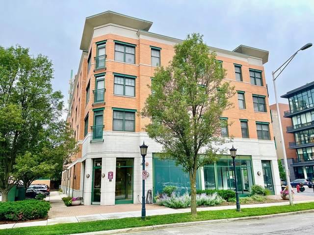 125 N Euclid Avenue #206, Oak Park, IL 60301 (MLS #11172132) :: Touchstone Group
