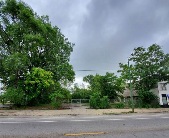 7523 S Halsted Street, Chicago, IL 60620 (MLS #11172223) :: O'Neil Property Group
