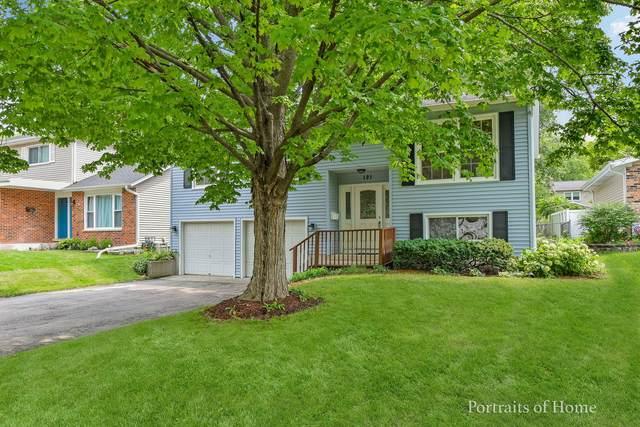121 N Ott Avenue, Glen Ellyn, IL 60137 (MLS #11172383) :: The Wexler Group at Keller Williams Preferred Realty