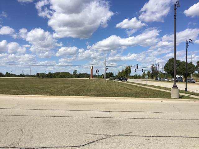 Lot 1 Laraway Road, New Lenox, IL 60451 (MLS #11172569) :: Schoon Family Group