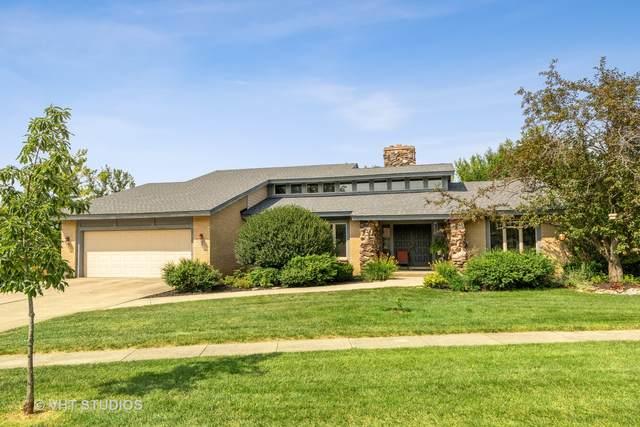 13262 W Oak Ridge Lane, Homer Glen, IL 60491 (MLS #11172696) :: O'Neil Property Group