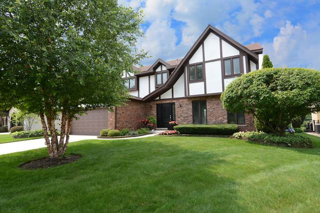 988 Spring Cove Drive, Schaumburg, IL 60193 (MLS #11172917) :: O'Neil Property Group