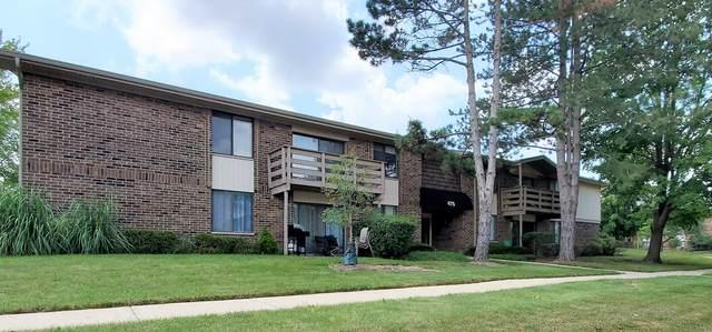 475 Raintree Court 2B, Glen Ellyn, IL 60137 (MLS #11173140) :: Suburban Life Realty