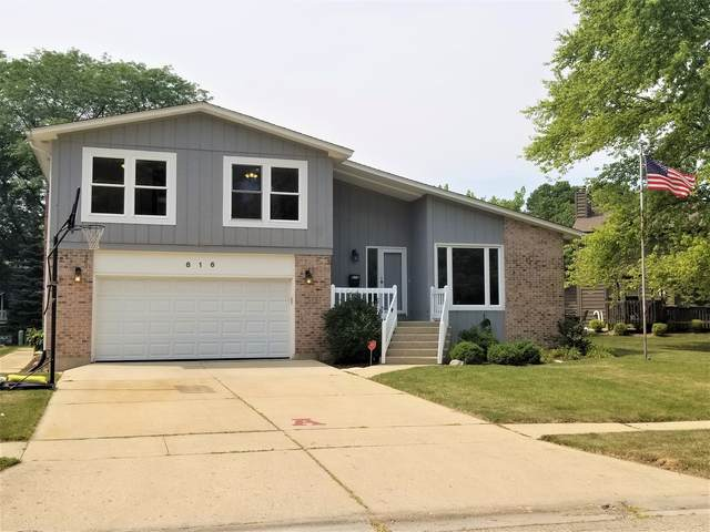 816 Hillandale Drive, Antioch, IL 60002 (MLS #11173150) :: Touchstone Group