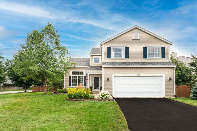 402 Terrace Lane, Oswego, IL 60543 (MLS #11173968) :: John Lyons Real Estate