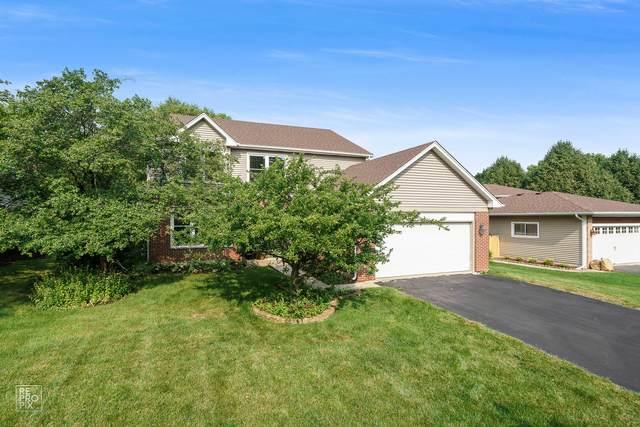 173 Ashcroft Drive, Bolingbrook, IL 60490 (MLS #11174250) :: The Dena Furlow Team - Keller Williams Realty