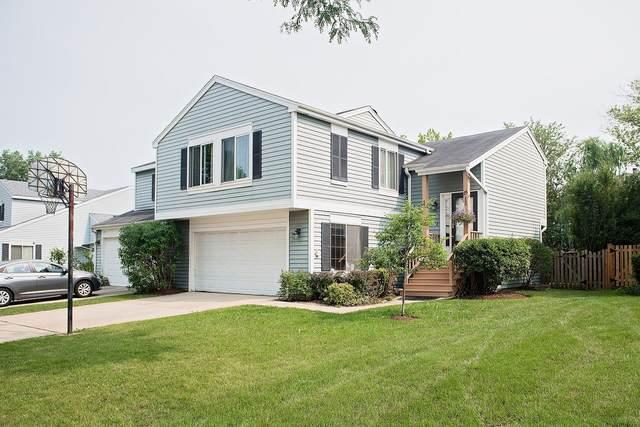 25 Buckingham Lane, Buffalo Grove, IL 60089 (MLS #11174403) :: Lewke Partners - Keller Williams Success Realty