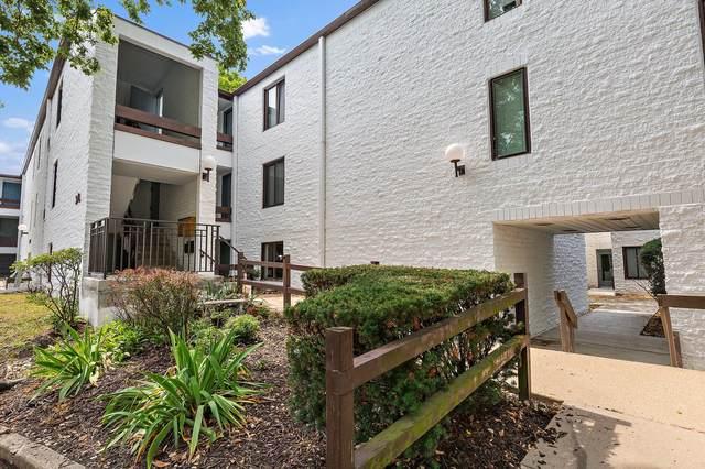342 W Miner Street 1A, Arlington Heights, IL 60005 (MLS #11174488) :: RE/MAX Next