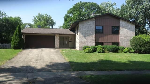 2925 Tyler Court, Woodridge, IL 60517 (MLS #11174519) :: The Dena Furlow Team - Keller Williams Realty