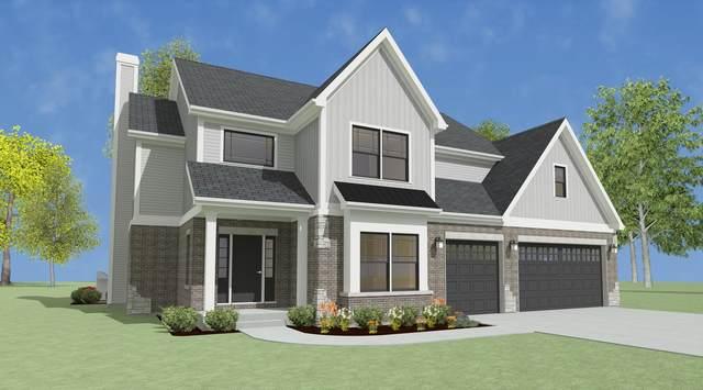 1710 Rohrssen Road, Elgin, IL 60120 (MLS #11174588) :: Charles Rutenberg Realty