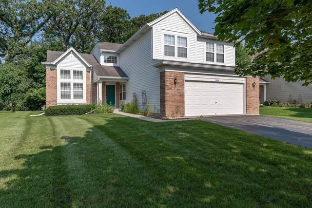 564 Arbor Lane, South Elgin, IL 60177 (MLS #11174606) :: Suburban Life Realty