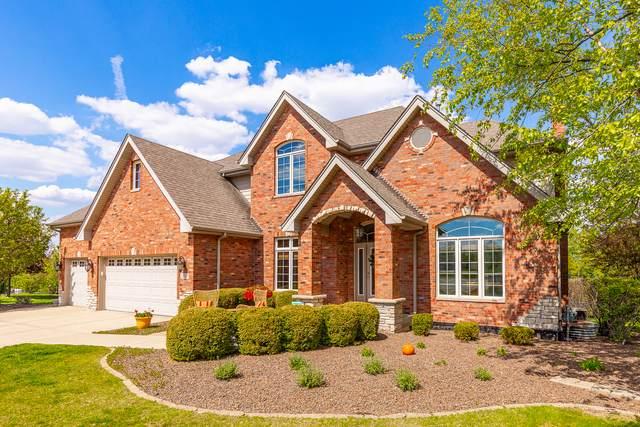 21767 Yellow Finch Lane, Frankfort, IL 60423 (MLS #11174617) :: Lewke Partners - Keller Williams Success Realty