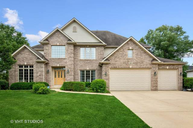 563 Cole Drive, South Elgin, IL 60177 (MLS #11174864) :: Suburban Life Realty