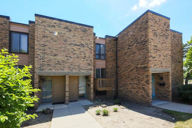 1535 Sycamore Place, Schaumburg, IL 60173 (MLS #11174873) :: John Lyons Real Estate