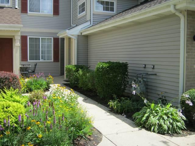 227 Sierra Pass Drive None, Schaumburg, IL 60194 (MLS #11174993) :: John Lyons Real Estate