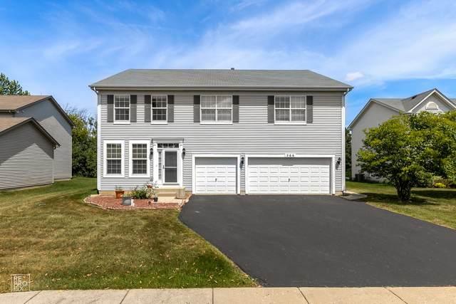 566 W Dalton Drive, Round Lake, IL 60073 (MLS #11175021) :: O'Neil Property Group