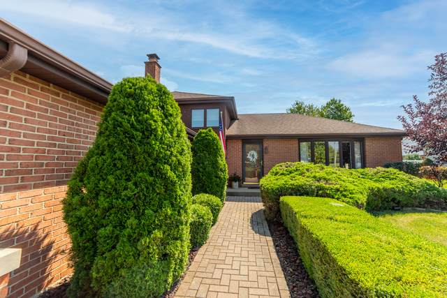 15257 S Raintree Drive, Orland Park, IL 60462 (MLS #11175115) :: The Wexler Group at Keller Williams Preferred Realty