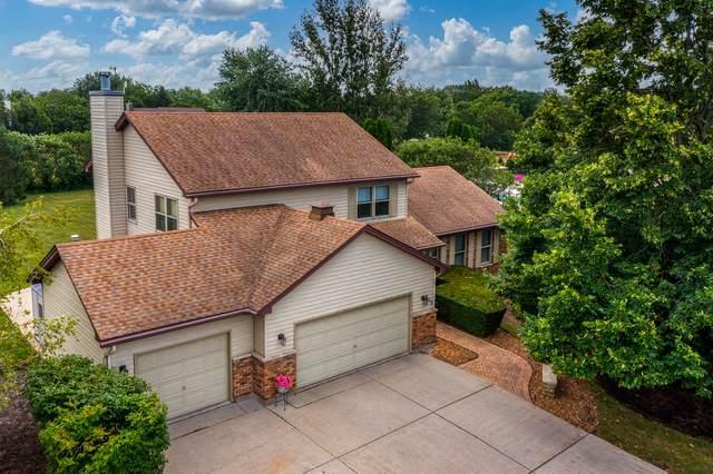 205 White Feather Lane, Gilberts, IL 60136 (MLS #11175148) :: John Lyons Real Estate
