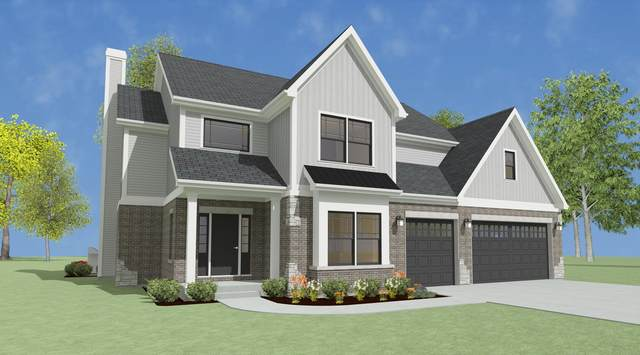 100 Gloria Drive, Elgin, IL 60120 (MLS #11175164) :: John Lyons Real Estate
