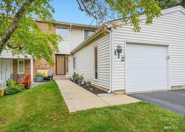 112 Pamela Drive, Bolingbrook, IL 60440 (MLS #11175241) :: Angela Walker Homes Real Estate Group