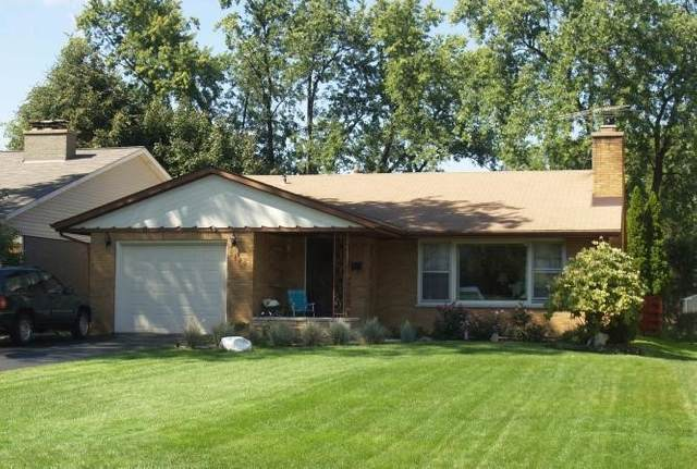 5420 Woodland Avenue, Western Springs, IL 60558 (MLS #11175282) :: O'Neil Property Group