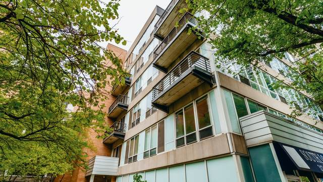 1430 S Michigan Avenue #508, Chicago, IL 60605 (MLS #11175362) :: Angela Walker Homes Real Estate Group