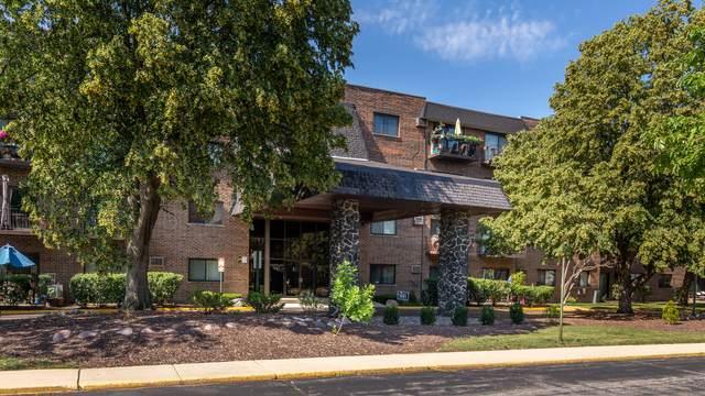 239 N Mill Road #113, Addison, IL 60101 (MLS #11175760) :: The Dena Furlow Team - Keller Williams Realty
