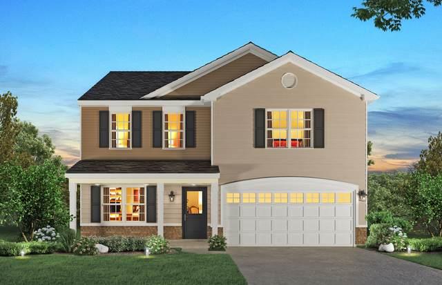 245 Ashcroft Lane, Oswego, IL 60543 (MLS #11175869) :: Carolyn and Hillary Homes