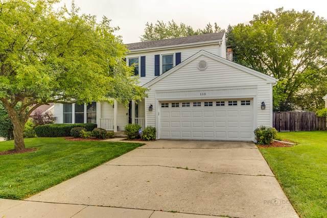 113 Alexandria Drive, Vernon Hills, IL 60061 (MLS #11176126) :: John Lyons Real Estate