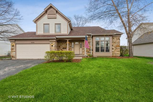 1228 Thorndale Lane, Lake Zurich, IL 60047 (MLS #11176150) :: Carolyn and Hillary Homes