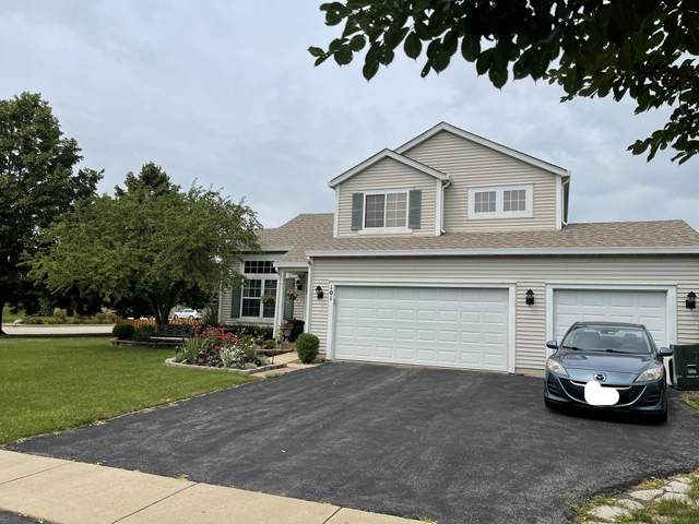 101 Iris Court, Oswego, IL 60543 (MLS #11176205) :: Carolyn and Hillary Homes