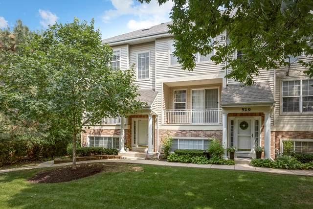531 Pheasant Trail, St. Charles, IL 60174 (MLS #11176221) :: BN Homes Group